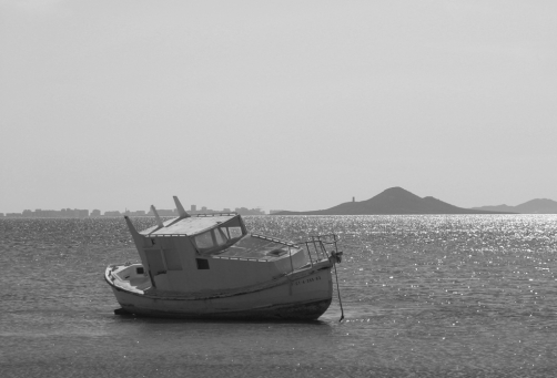 Dick Townend - Mar Menor Stranded