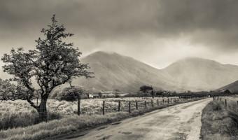 When Darkness Comes by Allan McKenzie