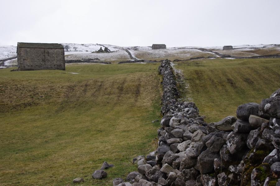Ulla Mercer - Dry Stone Wall
