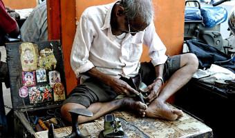 Moira Foster - Indian cobbler