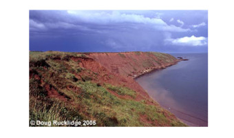 Doug Rucklidge - Filey Brigg