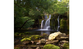 3rd Oregate Falls by Sue Eckersley