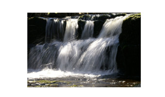 Doug Rucklidge - Dales waterfall