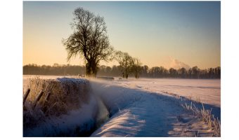 Snowy Fields by Dick Townend