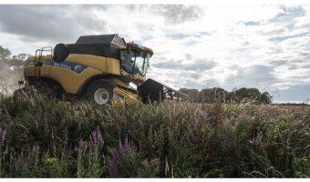 Bruce Clegg - Harvesting