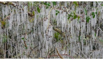 Bruce Clegg - Icicles