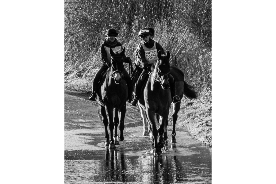 Bruce Clegg - Water splash